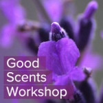 good-scents-flower
